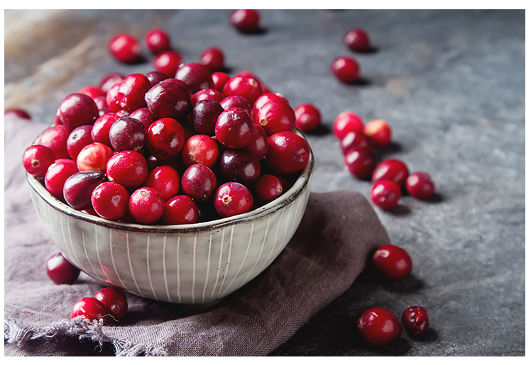 cranberries blog.jpg